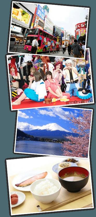 日本のアニメ、ポップカルチャー、無形文化遺産の和食と世界遺産の富士山